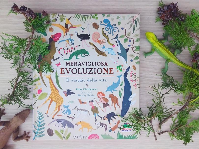 Meravigliosa evoluzione evidenza