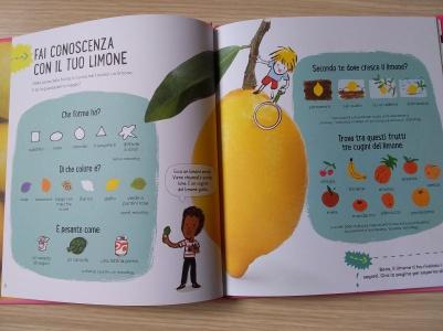 Caratteristiche limone
