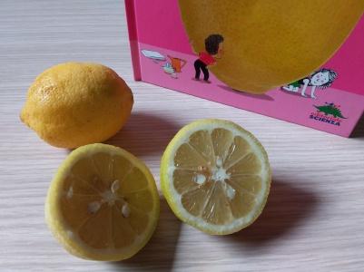 Esperimenti limone